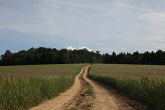 Field road Royalty Free Stock Photography