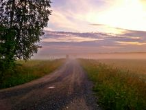 Field road in the fog Royalty Free Stock Photo