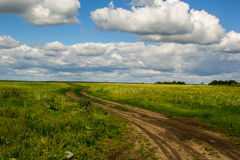 Field road on the green field. Sky clouds, summer Royalty Free Stock Photo