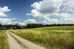 Field road through meadows to the forest. Long field dirt road and meadow, forest and blue sky, white clouds Royalty Free Stock Photos