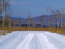 Field road in the winter Royalty Free Stock Photos