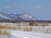 Field road in the winter Royalty Free Stock Images