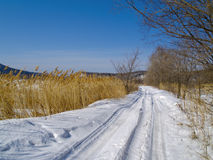 Field road in the winter Stock Photography