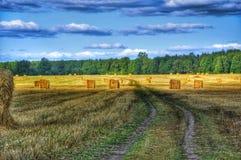 Field. Russian field, sky, road stock images