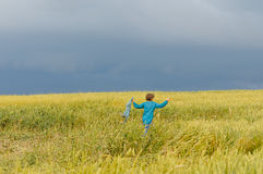 Field rye before thunderstorm Stock Photography