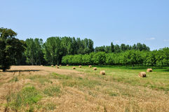 Field in Sainte Mondane in perigord Stock Images