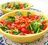 Field salad with paprika Royalty Free Stock Photo