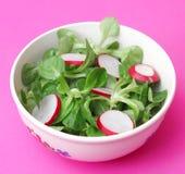 Field salad with radish. A fresh field salad with radish Royalty Free Stock Photo