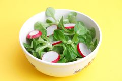 Field salad with radish. A fresh field salad with radish Royalty Free Stock Photos