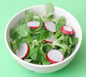 Field salad with radish. A fresh field salad with radish Royalty Free Stock Image