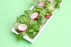 Field salad with radish Royalty Free Stock Photo