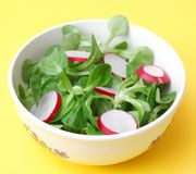 Field salad with radish. Some fresh field salad with red radish Stock Images