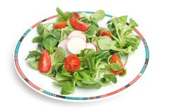 Field salad with tomatoes and radish. A field salad with tomatoes and radish Stock Image