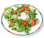 Field salad with tomatoes and radish Royalty Free Stock Photography