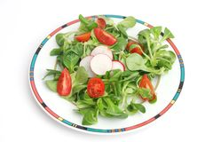 Field salad with tomatoes Royalty Free Stock Image
