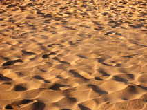 Field of sand. Expanse of and in sunset light royalty free stock images