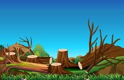 Field scene with chopped woods. Illustration Stock Photos