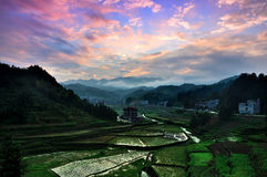 Field Scenery In Xinhua County Royalty Free Stock Image