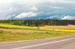 Road, Field, Forest.  The landscape of the lines. Stock Photos