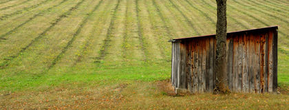 Field and shed. Timber lean to shed in front of neat striped grass field Stock Photo