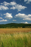 Field and sky. – Slovakia nature Royalty Free Stock Photography