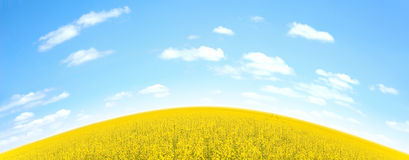 Field and sky Royalty Free Stock Images