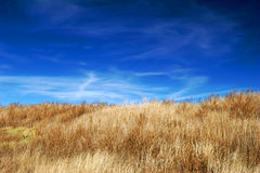 Field and sky. Fall field and sky with clouds Royalty Free Stock Photography