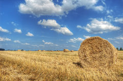Field and sky. Royalty Free Stock Image