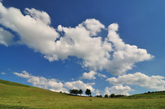 Field and sky. Grass field with clouds on blue sky Royalty Free Stock Photos