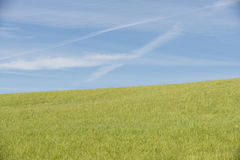 Field & Sky Stock Images