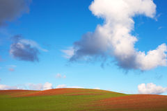 Field and sky. Stock Images