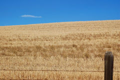 Field and Sky. A field with blue sky and a fencepost in the foreground Stock Photo