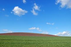 Field and sky Stock Images