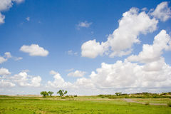 Field & sky. Green field in a sunny day, with beautiful clouds in the blue sky Royalty Free Stock Photo