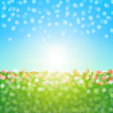 Field and sky blurs background. Sun shine colorful flowes blue sky kid wallpaper Royalty Free Stock Images