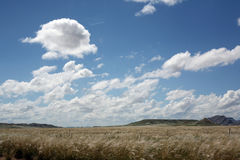Field with sky and clouds. Summer sky with fluffy clouds by a field Stock Photos