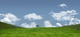 A Field and sky image. Field and sky with copy space Royalty Free Stock Photos