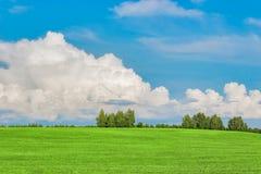 Field and sky Stock Photos