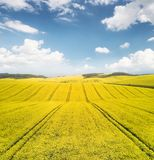 Agricultural landscape as a background. Field and sky in the summer time. Agricultural landscape as a background Stock Photo