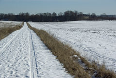 Field with snow Royalty Free Stock Image