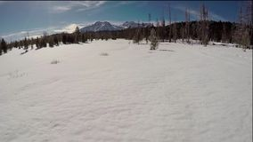 Field of snow and Idaho stock video