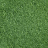 Field of soft grass, top view. 3d illustration Stock Photography