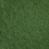 Field of soft grass, top view. 3d illustration Stock Photo