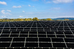 Field of solar cells Stock Photography