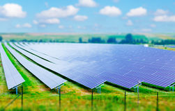 Field of solar panels Stock Photography
