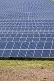 Field of solar panels Stock Photos