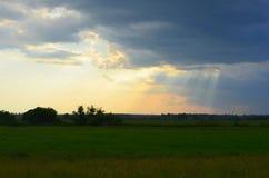 field solnedgången Royaltyfri Bild