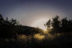 field solnedgången royaltyfria bilder