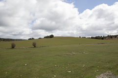Field Soria. In Soria, Castilla leon, Spain Stock Image