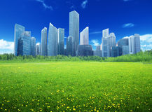 Field of spring flowers. And modern city Royalty Free Stock Photography